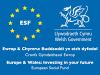 Welsh Government European Social Fund